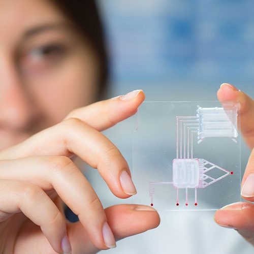 Solmeglas expertos en material de laboratorio, nanotecnología y biotecnología. Tecnología 3D y material consumibles de laboratorio para tu investigación.