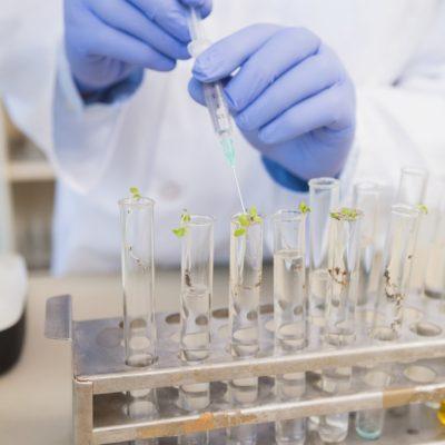 proteccion-de-la-mano-guantes-de-laboratorio-medicos-bioseguridad